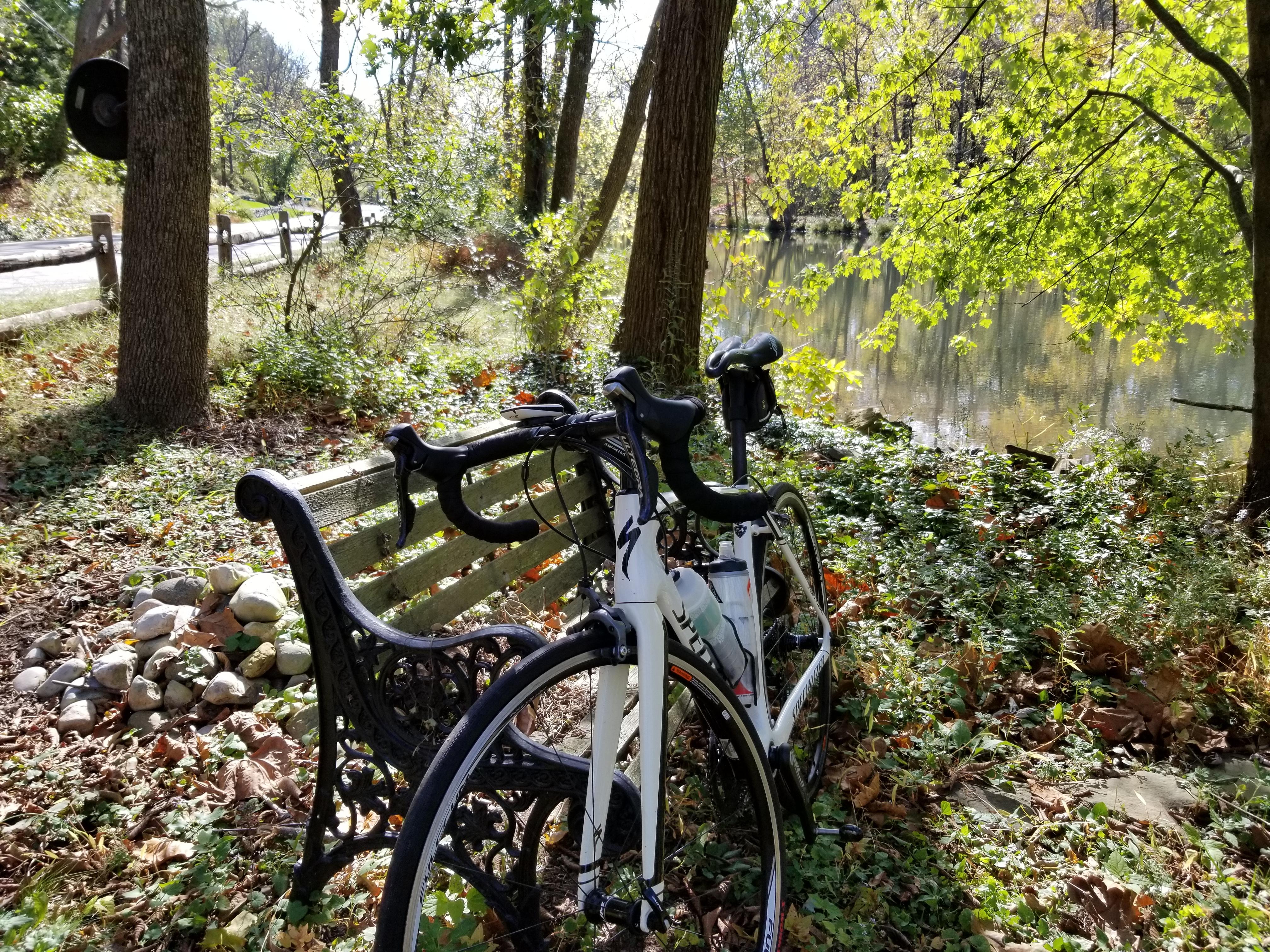 Autumn_biking_on Canal_Road